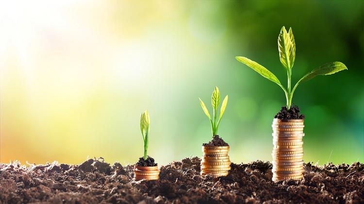 Tasarruflu Hızlıca Para Biriktirmenin Püf Noktaları